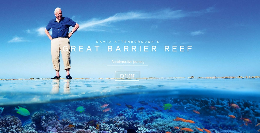 the great barrier reef essays